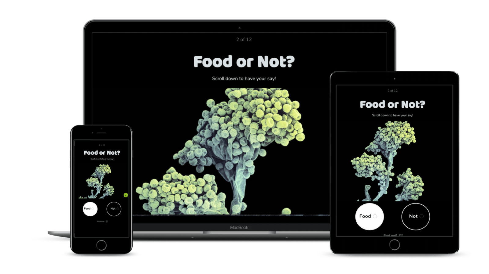 """The Food We Eat?"" asks you to identify food and compares your answers with others"